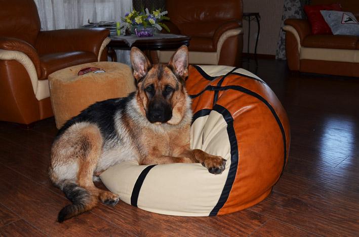 кресло-мяч баскетбольный мяч