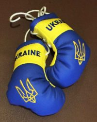 боксерские перчатки Украина